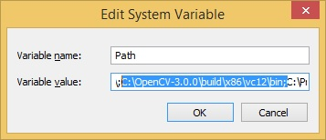 edit system variable - variable path